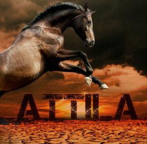 abao_attila