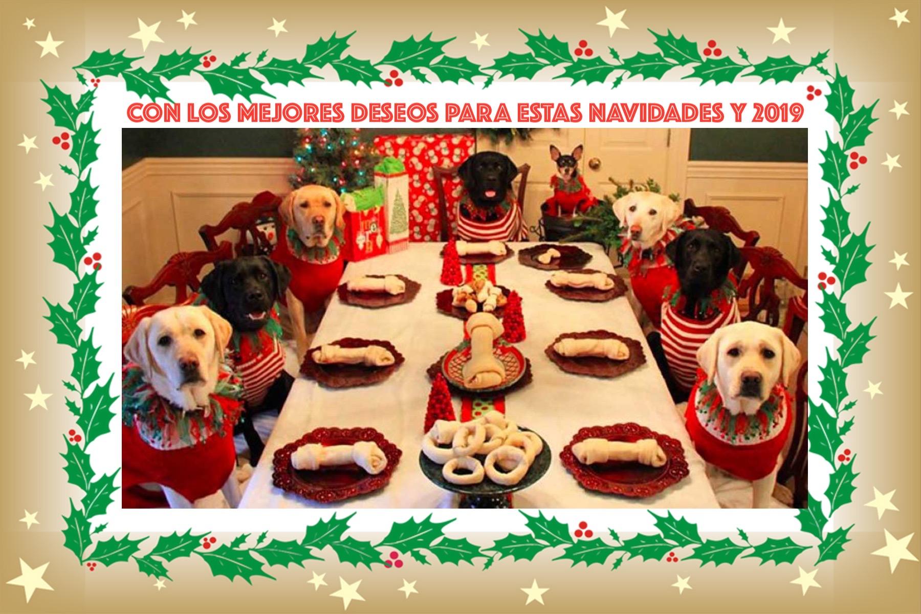Felices Navidades 2018/2019