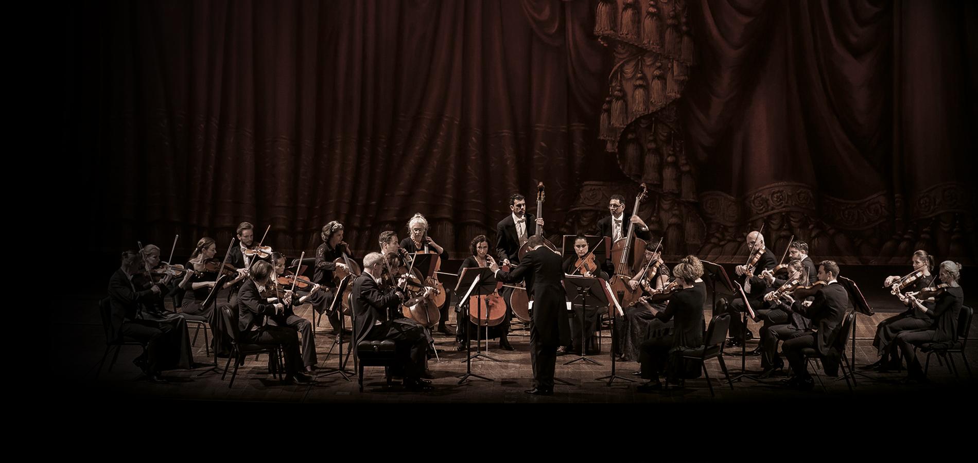 orquesta-camara-viena